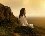 Meditar El Camino del Recuerdo Vol. 5 Experimentar Paz