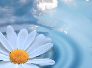 Ocean of Purity Meditation.mp4